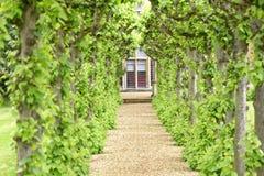 English garden, knebworth house, england. pruned. Image taken of a stately home protected by neatly pruned trees in knebworth house, hertfordshire, england, uk stock image