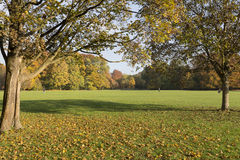 The english garden in Munich, Germany Stock Image