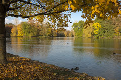 The english garden in Munich, Germany Royalty Free Stock Photography