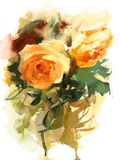 English Garden Roses Watercolor Flowers Illustration Hand Painted Stock Photo