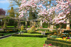 English garden in Spring. English garden in the Spring royalty free stock images