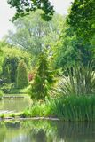 English garden with trees and pond Royalty Free Stock Image