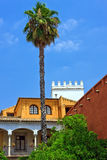 English gardens of the Alcazar Palace. Seville, Spain Royalty Free Stock Images