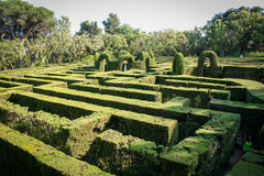 English green labyrinth with a cloudy sky Stock Photography