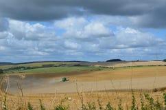 English harvest time. Stock Image