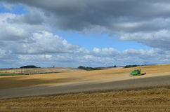English harvest time. Royalty Free Stock Images