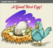 English idiom showing a nest with money Royalty Free Stock Photo