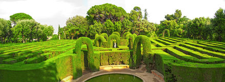 English labyrinth. English green labyrinth. Panoramic extra large photo Royalty Free Stock Image