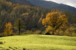 The English Lake District in Autumn (Fall). The Autumn (fall) Lake District Royalty Free Stock Photos