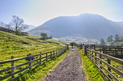 English Lake District Park Royalty Free Stock Photo
