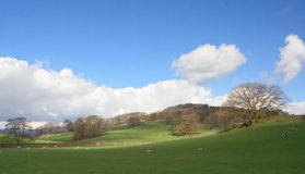 English Landscape. Rolling hills and meadows of Englands Lake District, Cumbria Royalty Free Stock Photography