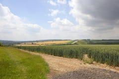 English landscape Stock Images