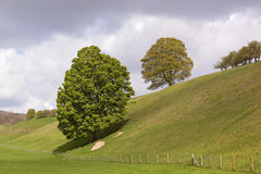 English landscape. An english landscape with green meadows and trees with fresh green leaves under a showery april sky Stock Photo