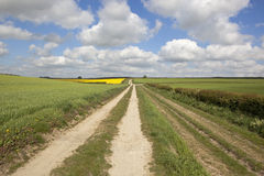 English landscape. An english landscape with a farm track and arable fields under a blue cloudy sky in springtime Stock Photo