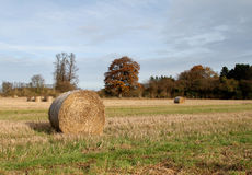 English Landscape Royalty Free Stock Image