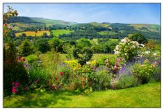 English Landscape Across The Fields. An English landscape across the fields.  Green, flowers and roses, blue sky.  A beautiful scene looking through your window Stock Photography