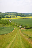 English Landscape with Farm track royalty free stock image
