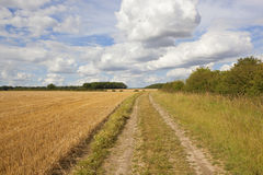 English landscape with a farm track and stubble field Royalty Free Stock Photos