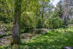 English landscape garden in Spring with trees and pond in spring in uk. Tranquil pond in an English landscape garden in Spring Stock Photography