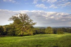 English Landscape in Spring. Typical Gloucestershire landscape on a spring evening Stock Images