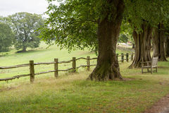 English landscape. In the summer Royalty Free Stock Photography