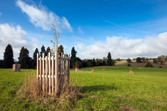 English landscape view in early autumn. Landscape view on an autumn morning in Warwickshire, England. Young fenced trees in the foreground, with cloudy blue Stock Photography