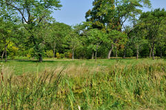 English landscaped garden in the park of Versailles Palace Royalty Free Stock Photo