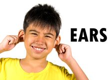 English language learning card with portrait of 8 years old child touching pulling his ear isolated on white background as part of royalty free stock image