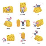 English language preposition set, educational activity with mouse