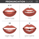 English Language Pronunciation Visual Guide. Visual pronunciation guide with mouth showing correct way to pronounce English sounds vector illustration