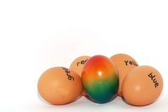 English lettered eggs for easter colorful. Various english lettered eggs for Easter with a colorful in the middle Stock Images