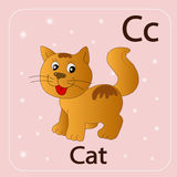 English letters C and red cat. Stock Image - English letters C and red cat Royalty Free Stock Photo