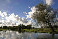 English meadow river wey surrey countryside Stock Photo
