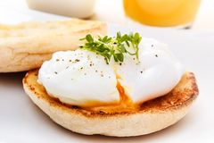 English muffin with egg Royalty Free Stock Photo