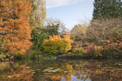 English park in autumn Stock Image