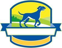 English Pointer Dog Pointing Up Crest Retro Royalty Free Stock Photo