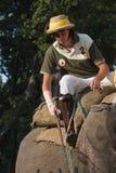 English polo player, during elephant polo game, Thakurdwara, Bardia, Nepal Royalty Free Stock Photography
