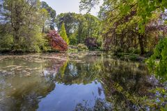 English pond with landscape garden in Spring. Tranquil pond in an English landscape garden in Spring Stock Photos
