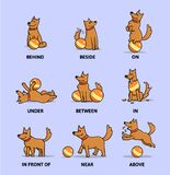 English prepositions poster with a cartoon character. Funny cartoon dog playing with ball set. Flat vector illustration