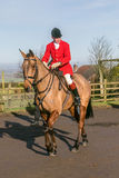 A  english rider ready for drag hunting Royalty Free Stock Photo