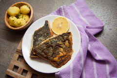 English roasted flounder Royalty Free Stock Image