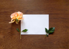 English rose and blank card for text on wood Royalty Free Stock Photo