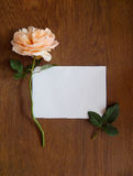 English rose and blank card for text on wood Stock Photo