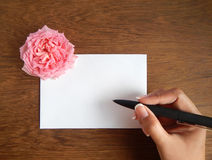 English rose and blank card for text on wood Royalty Free Stock Image