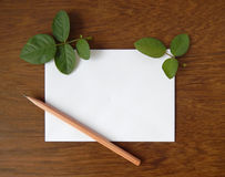 English rose and blank card for text on wood Royalty Free Stock Photos
