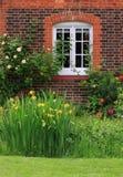 English rose window stock photo