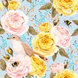 English roses and birds seamless Stock Photos