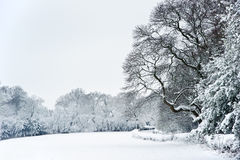 English rural countryside Winter snow landscape Royalty Free Stock Photography