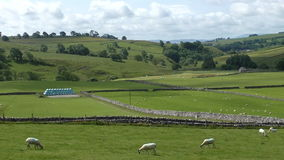 English rural farmland landscape stock footage