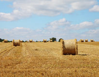 An English Rural Landscape Royalty Free Stock Images